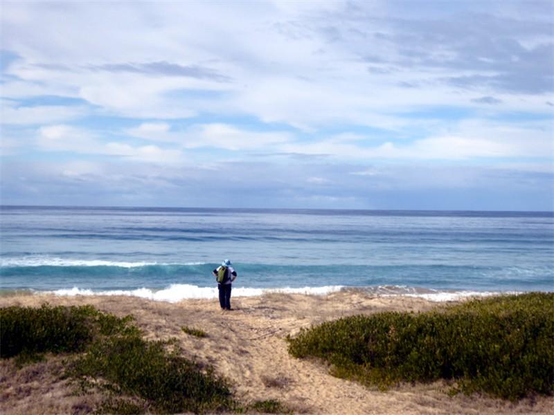 Batemans Bay Bushwalkers